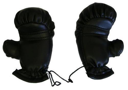 Dallas Boxing Gloves